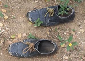 Honduran shoes